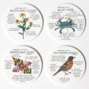 Maryland Anatomy Coaster Set