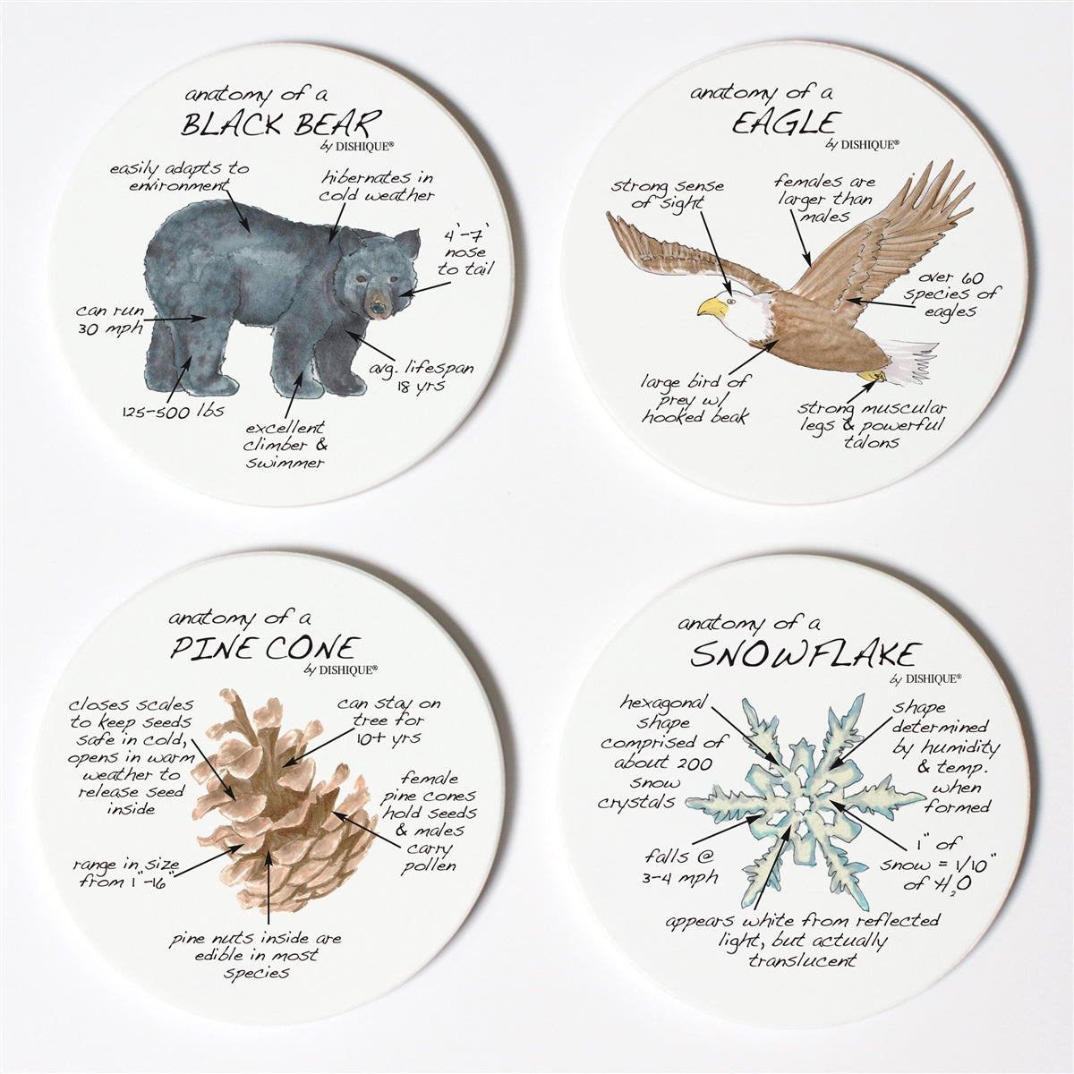 Mountain Life Anatomy Coaster Set