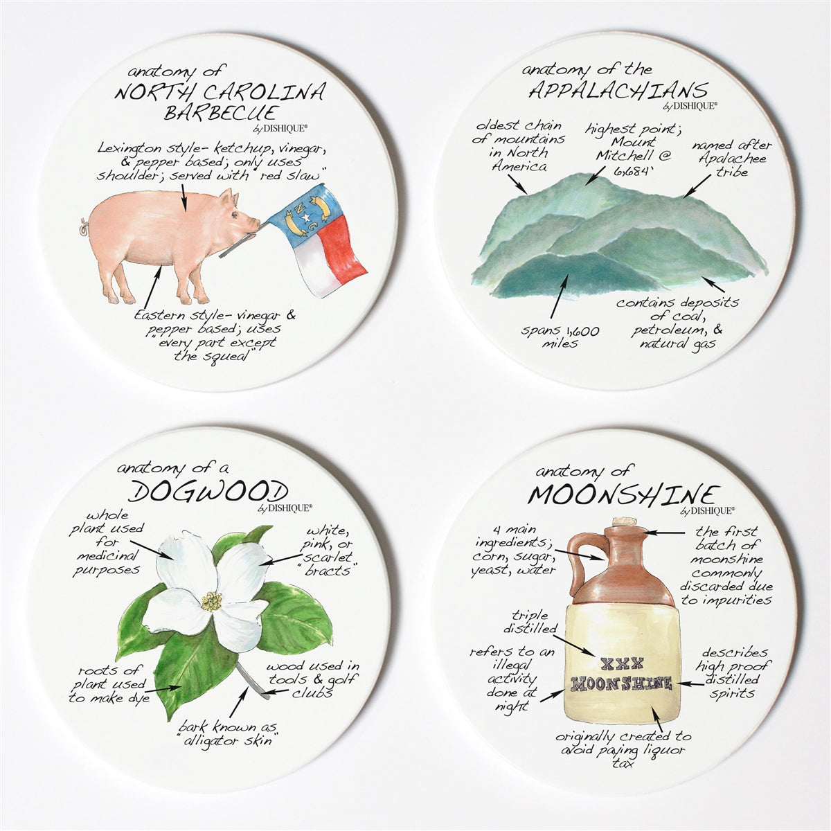 North Carolina Anatomy Coaster Set