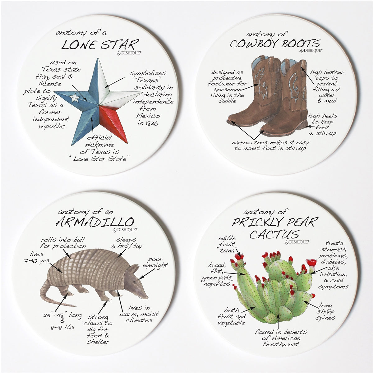 Texas Anatomy Coaster Set