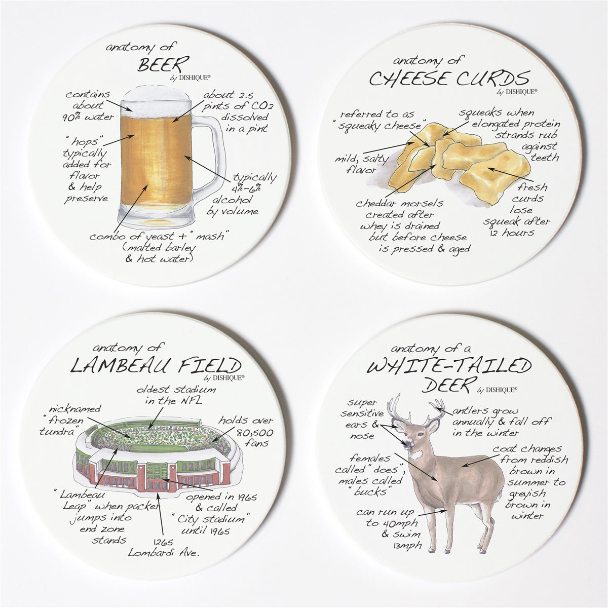 Wisconsin Anatomy Coaster Set