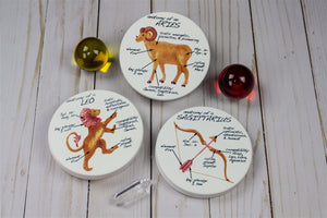 Aries Anatomy Individual Coaster - Zodiac Gifts