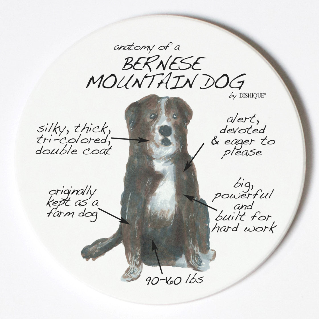 Individual Coaster - Dog Breed Gifts - Bernese Mountain Dog