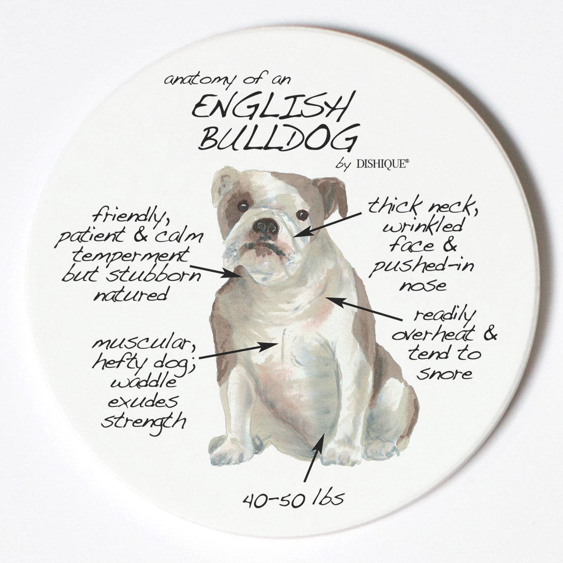 Individual Coaster - Dog Breed Gifts - English Bulldog