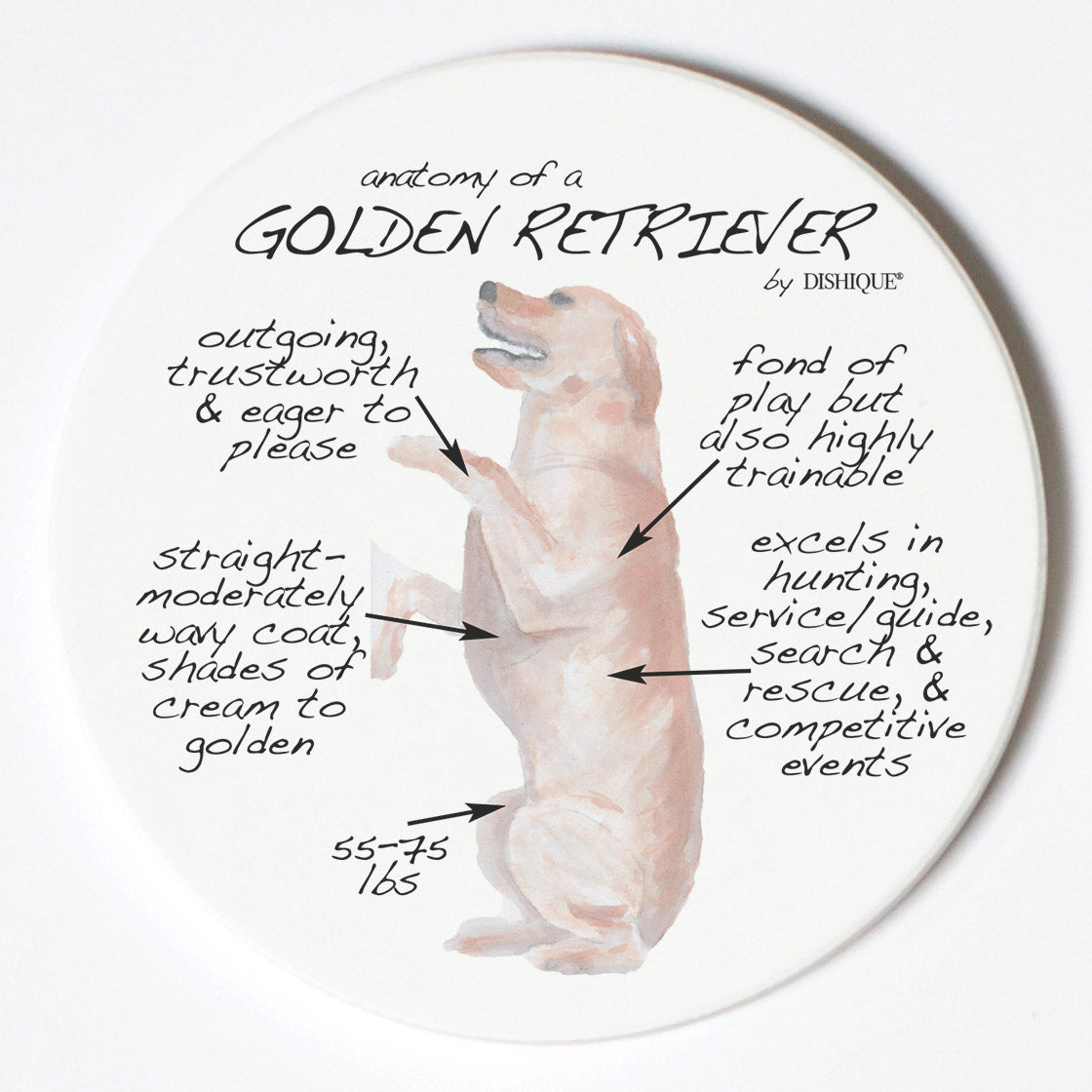 Individual Coaster - Dog Breed Gifts - Golden Retriever