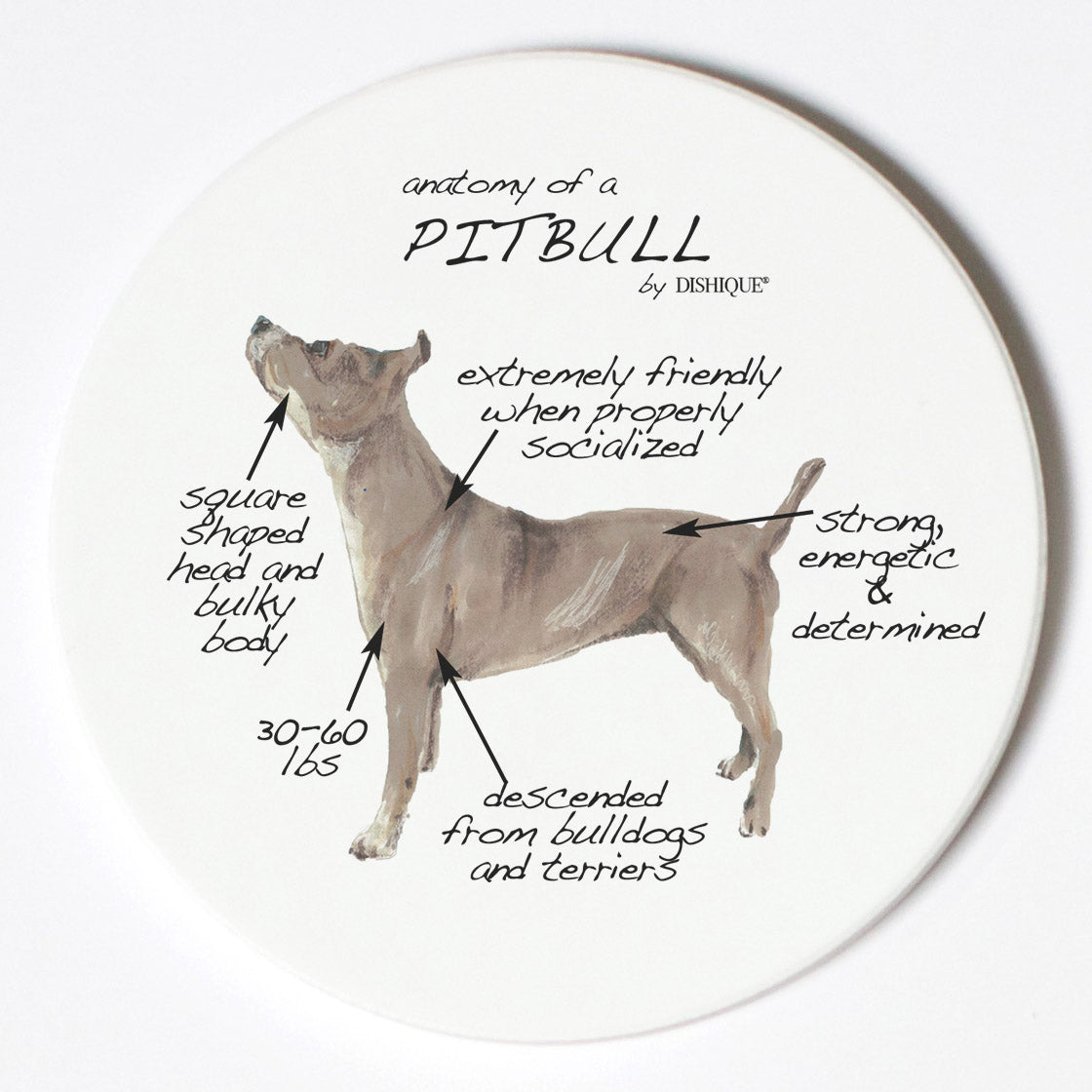 Individual Coaster - Dog Breed Gifts - Pitbull