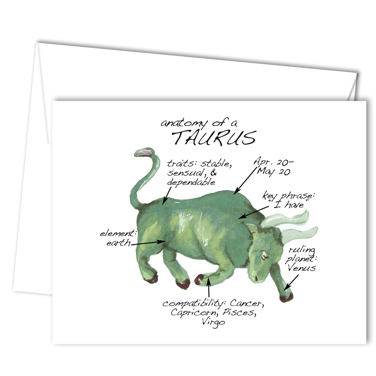 Taurus Anatomy Greeting Card (blank inside)