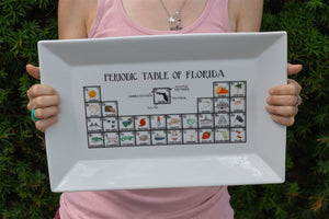Periodic Table of Florida