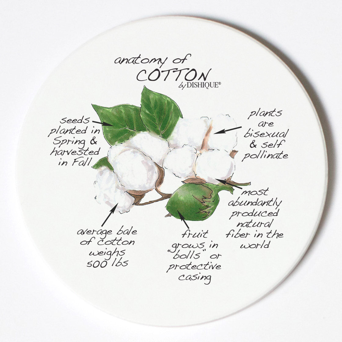 Individual Coasters - Plants - Cotton