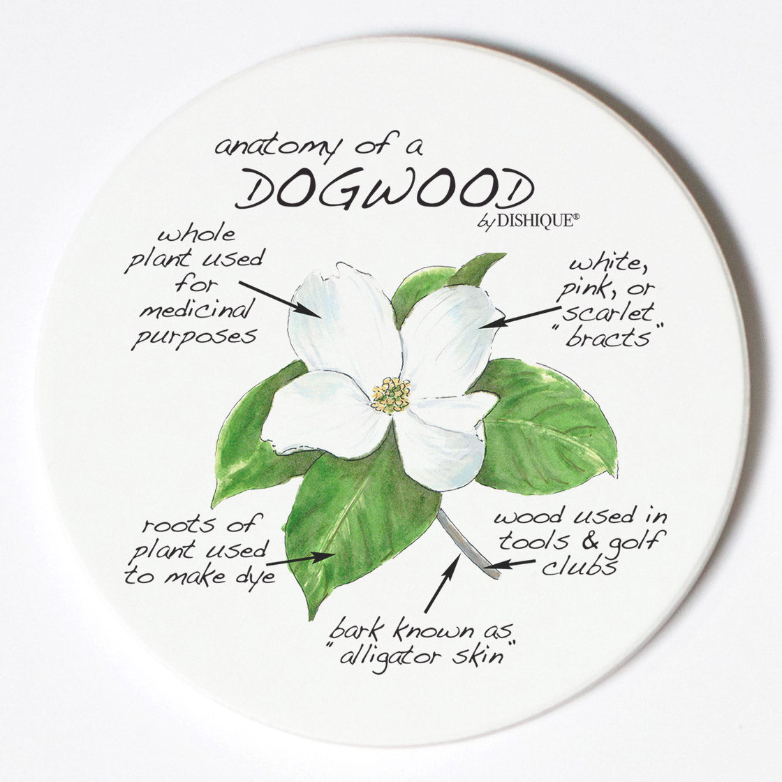 Individual Coasters - Plants - Dogwood