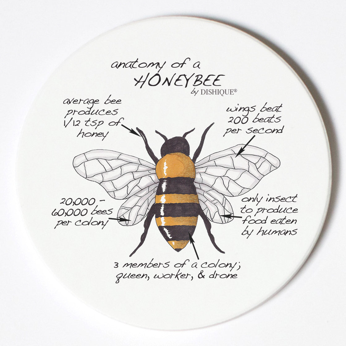 Individual Coasters - Animals & Insects - Honeybee