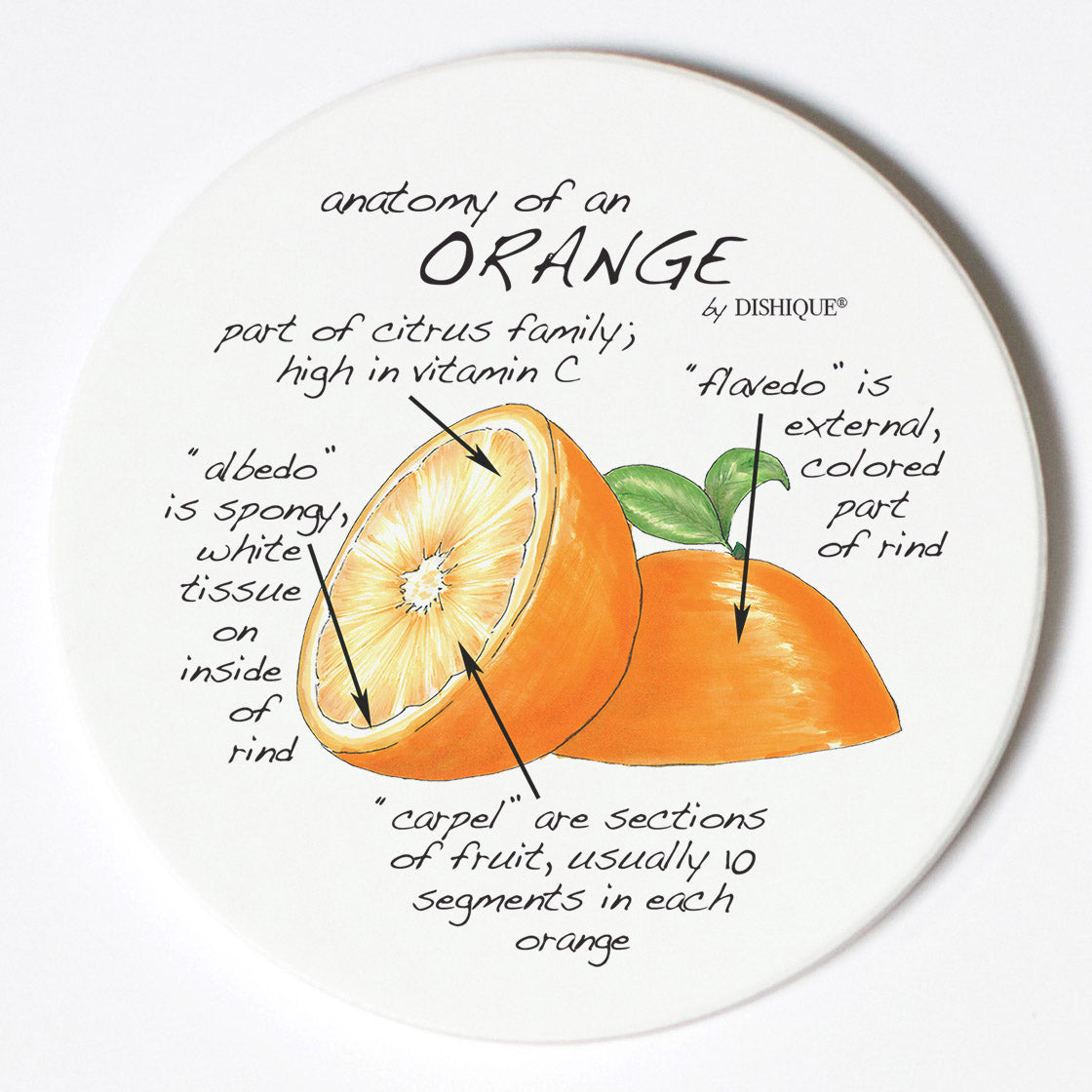 Individual Coasters - Food & Drinks - Orange