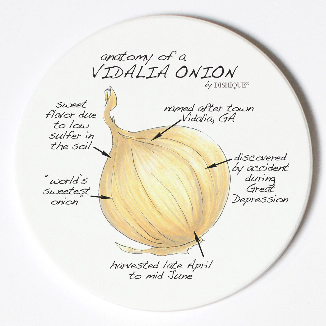 Individual Coasters - Food & Drinks - Vidalia Onion
