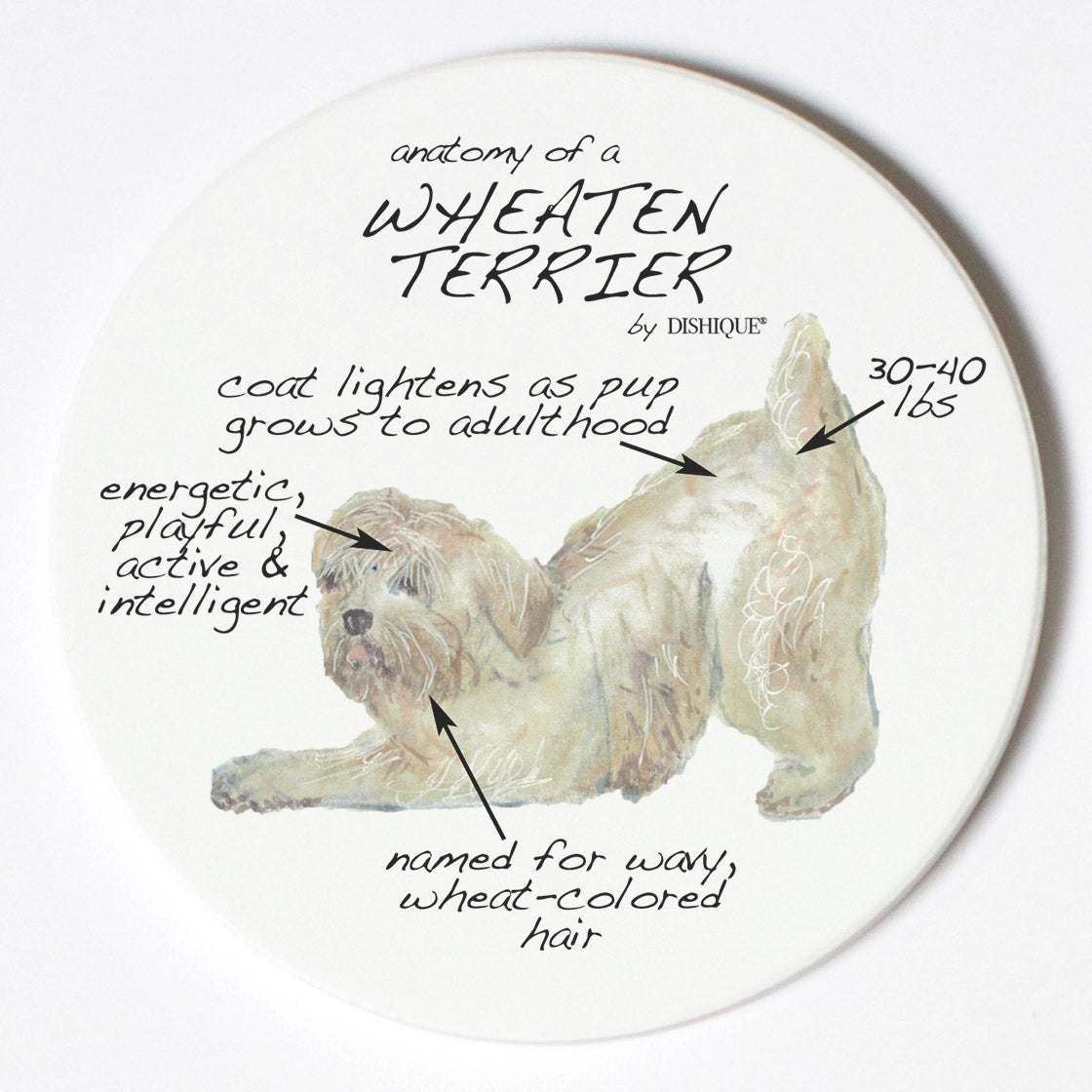 Individual Coaster - Dog Breed Gifts - Wheaten Terrier