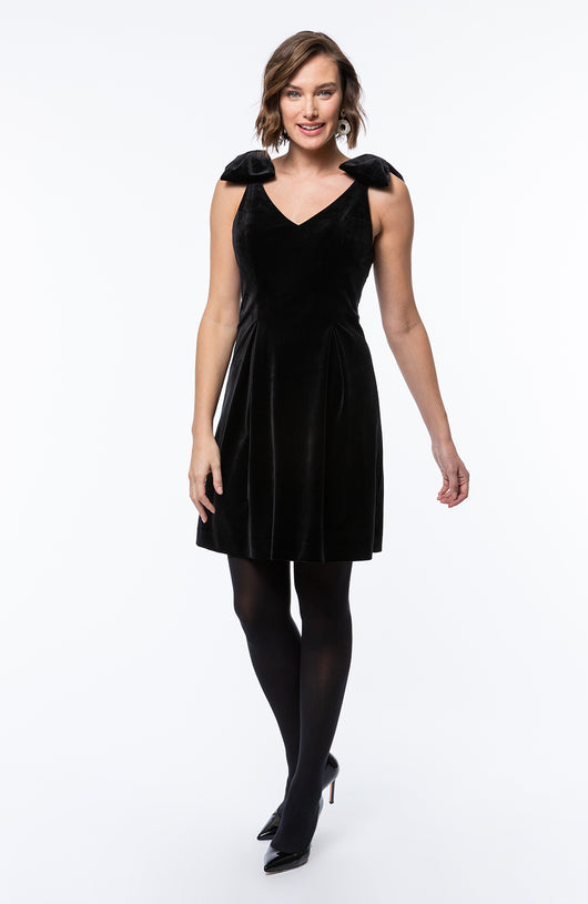 Tyler Boe Penelope Velvet Dress
