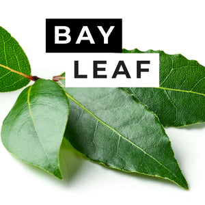 Bay Leaf Candle