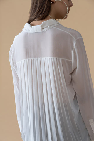 Pleated Back Collared Sheer Blouse