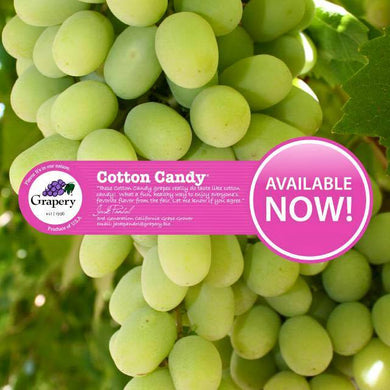 Cotton Candy Grapes - 1 lb. Bag - Grateful Produce Box