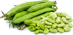 Fava Beans - 2lbs. - Grateful Produce Box