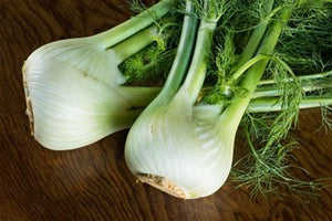 Organic Fennel Head (each) - Grateful Produce Box