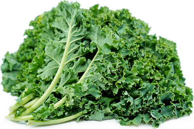 Organic Green Kale - 2 Bunches - Grateful Produce Box