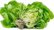 Hydro Boston Lettuce - Grateful Produce Box