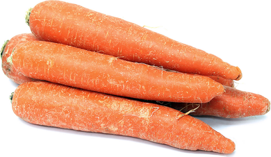 Jumbo Carrots -  5 lbs. - Grateful Produce Box