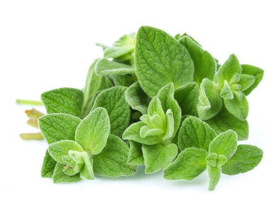 Oregano - 1.25 oz. - Grateful Produce Box