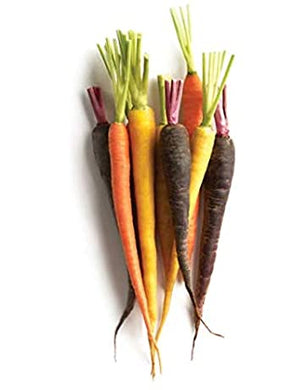 Organic Cello Rainbow Carrots - 2lb - Grateful Produce Box