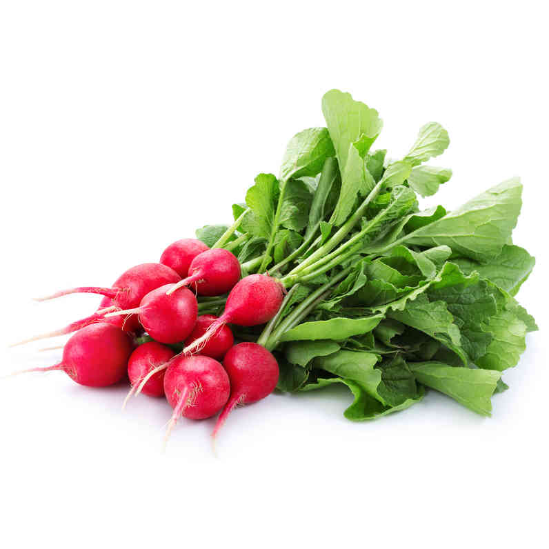 Organic Radish Bunch - Grateful Produce Box