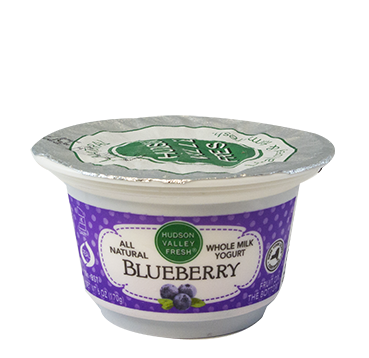 Premium Fresh Hudson Valley Blueberry Yogurt - 6 oz. - Grateful Produce Box