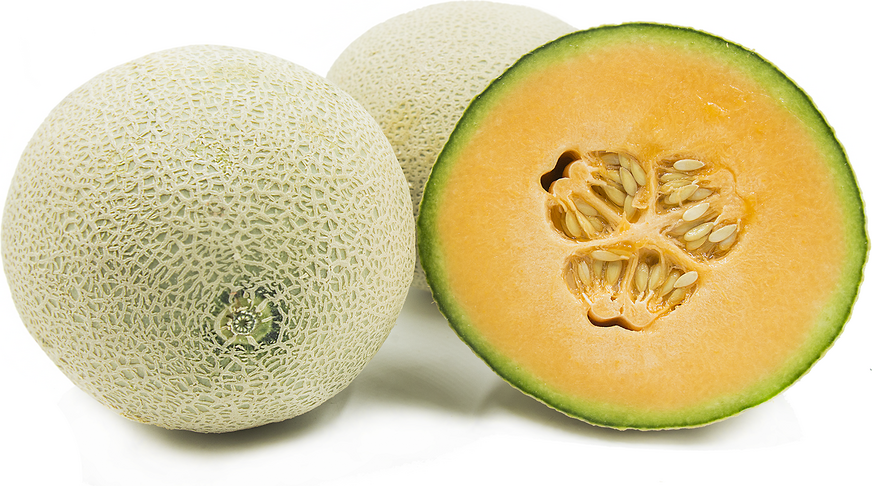 Cantaloupe Melon - Grateful Produce Box