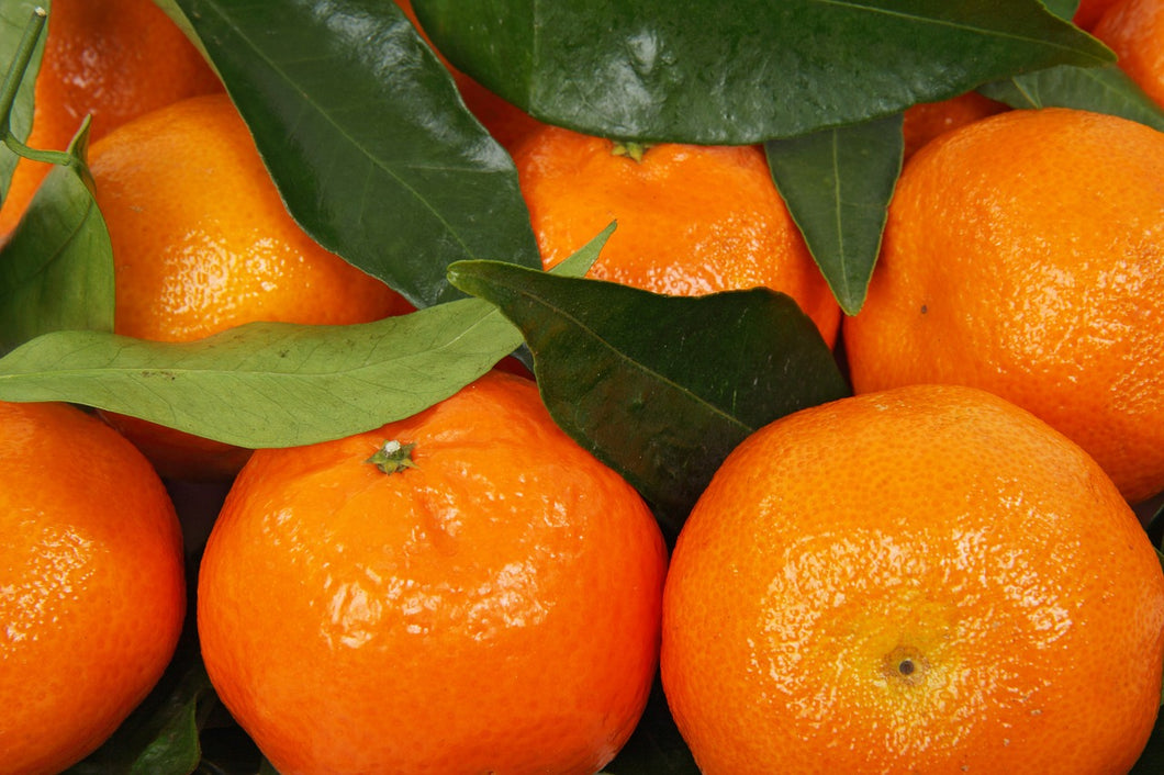 Clementine Orange 3lb Bag - Grateful Produce Box