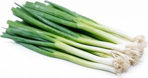 Local Organic Scallion - 2 bunches - Grateful Produce Box