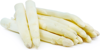 White Asparagus - 1 lb. - Grateful Produce Box