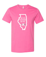 Making Strides Against Breast Cancer (Chicago, Oakbrook Terrace, Tinley Park, Peoria, Springfield, Maryville)