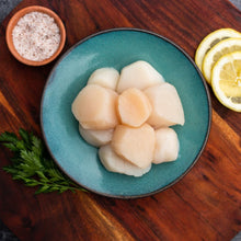 Load image into Gallery viewer, Large Wild Maine Scallops