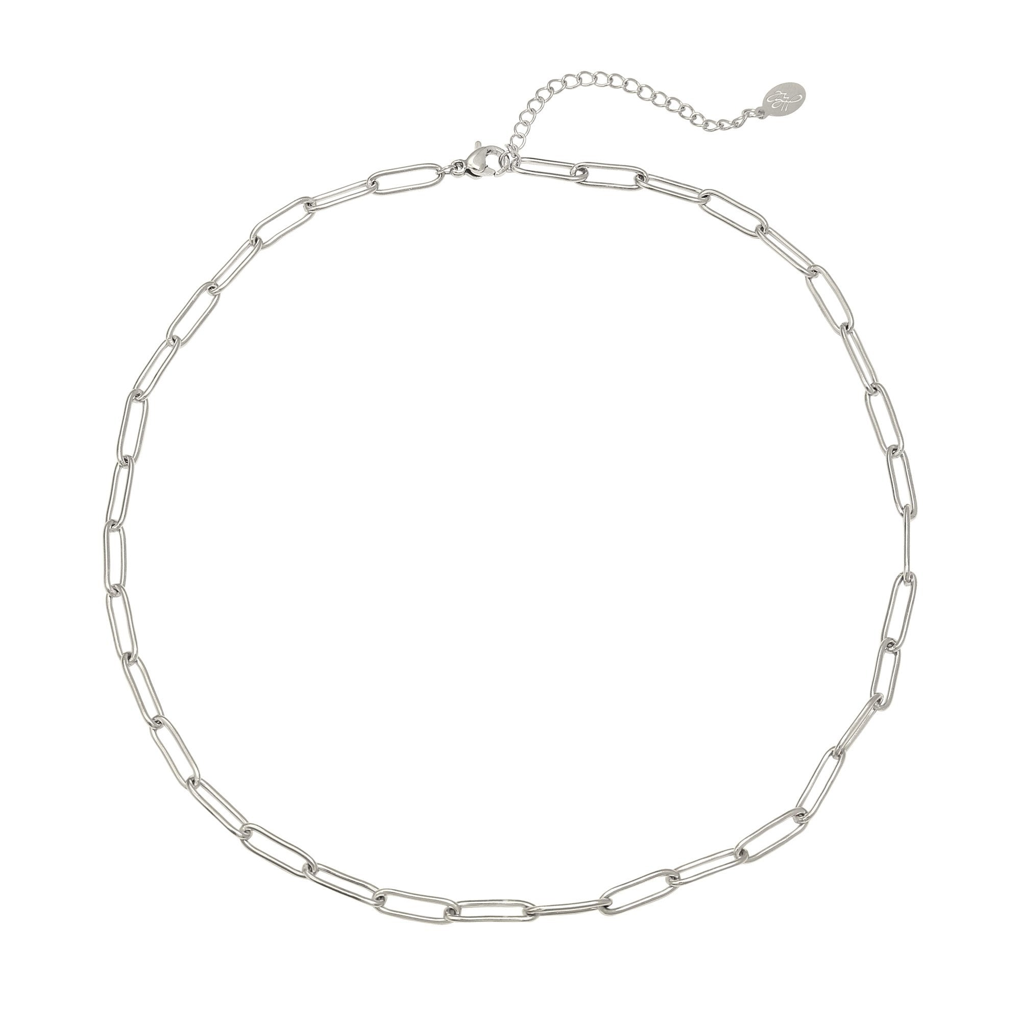 Charlie Chained Silver Necklace