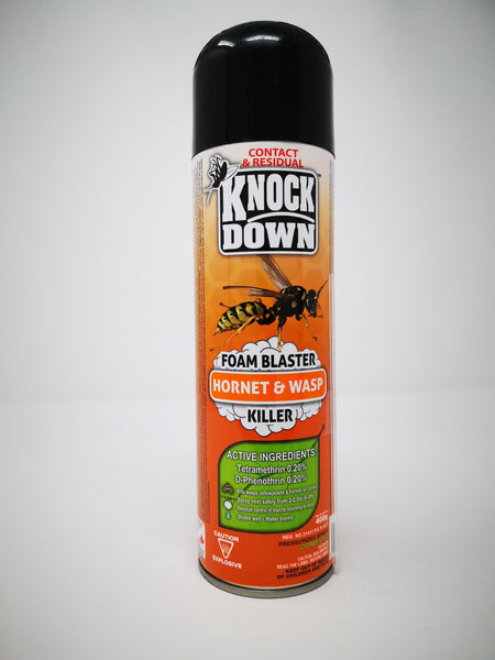 Contact and Residual Hornet and Wasp Killer