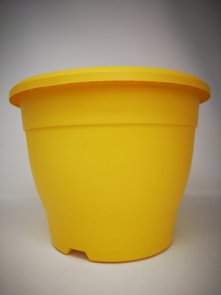 "10.2"" (26cm) Yellow Pot"