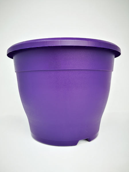 "10.2"" (26cm) Purple Pot"