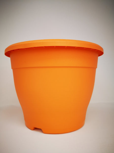 "10.2"" (26cm) Orange Pot"