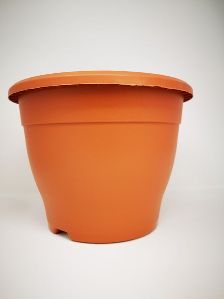 "10.2"" (26cm) Brown Pot"