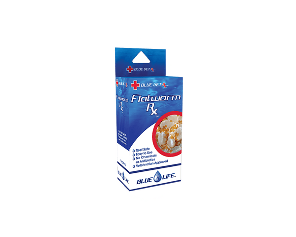 Flatworm Rx Aquarium Treatment - Blue Life - PetStore.ae