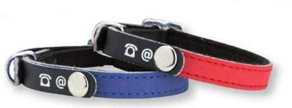 Porte Adresse Writable Collar - Blue - Bobby - PetStore.ae