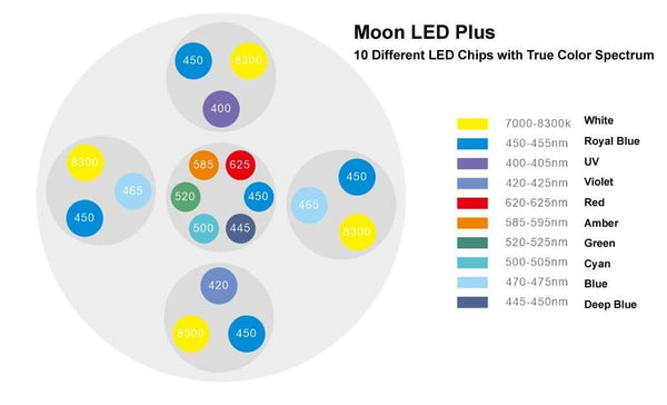 Moon LED Plus Lighting - Coral Box - PetStore.ae