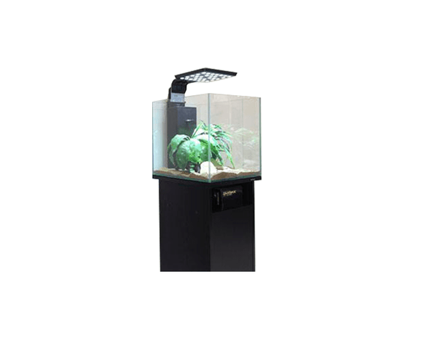Black Wood Grain Cabinet for 50cm Cube - Dymax - PetStore.ae