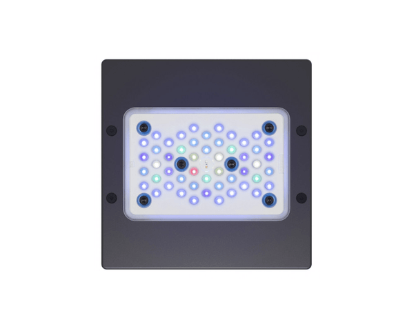 Radion XR15 G5 Blue LED Light Fixture - EcoTech Marine - PetStore.ae