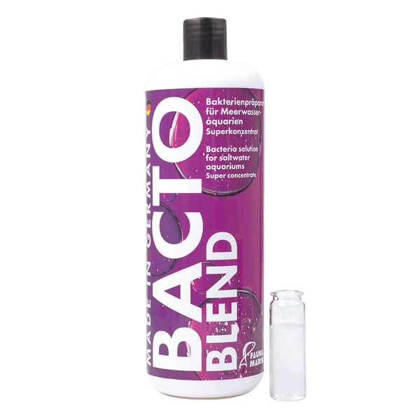 Fauna Marin - Bacto Reef Blend - Bacteria Solution for Saltwater Aquariums - Super Concentrate! - PetStore.ae