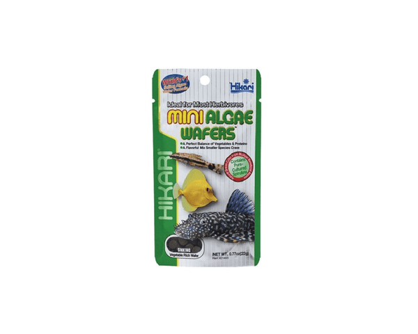 Tropical Mini Algae Wafers Fish Food - Hikari - PetStore.ae